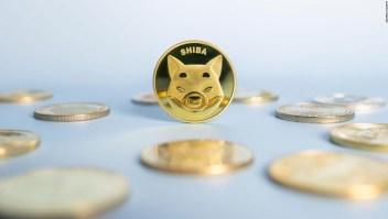 Shiba inu, la criptomoneda que aumentó más del 40% en una semana